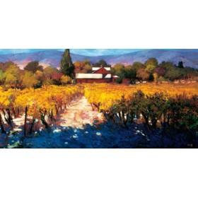 8599 / Cuadro Vineyard Afternoon