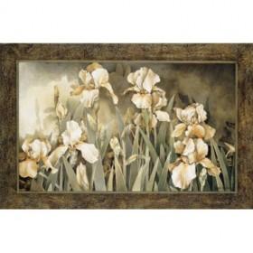 2789 / Cuadro Field of Irises