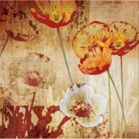 12892 / Cuadro Poppy Heat I
