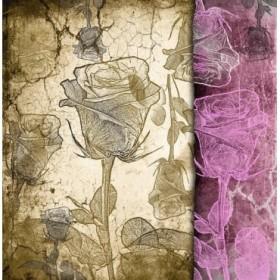 Cuadro Stone & Roses A