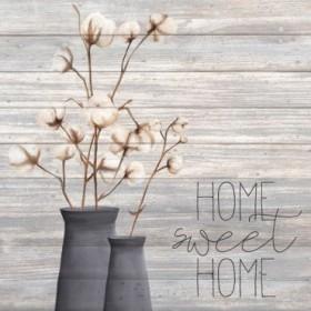 Cotton Home 1