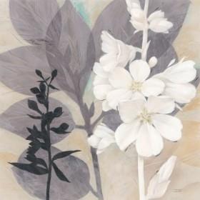 Botanical Story 2