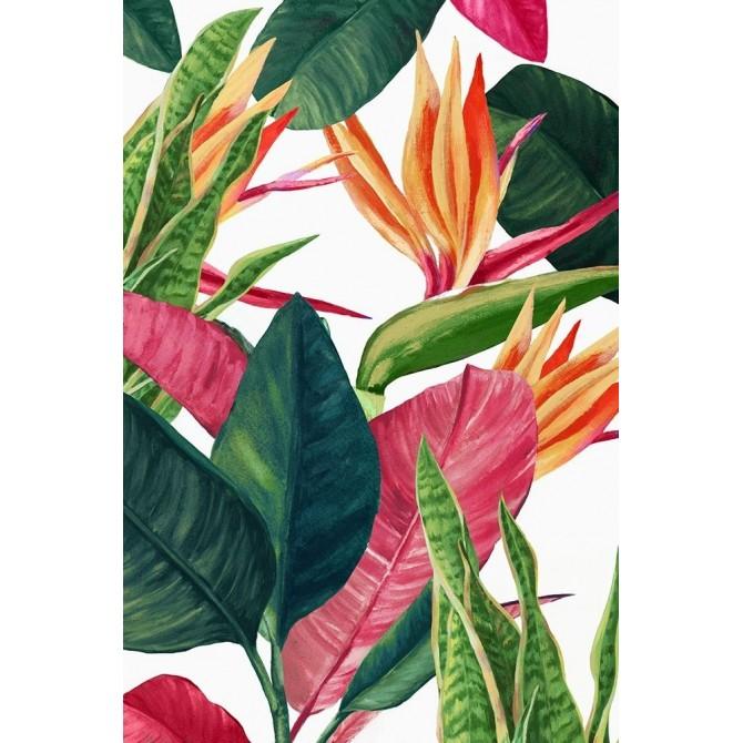Edens Tropical Palms