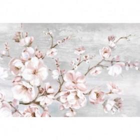 Spring Cherry Blossoms I
