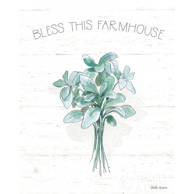 Farmhouse Cotton VI