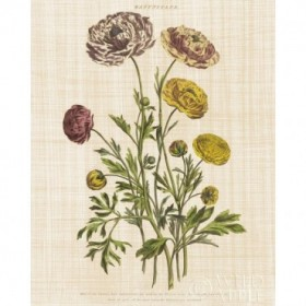 Herbal Botany XXII v2 Linen Crop