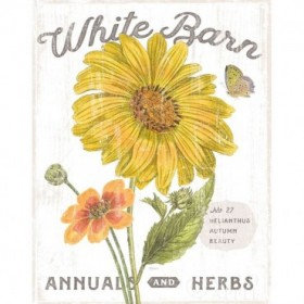 White Barn Flowers I