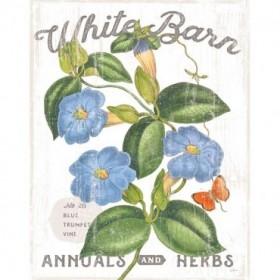 White Barn Flowers II