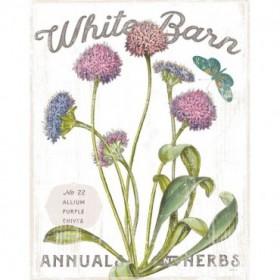 White Barn Flowers VI