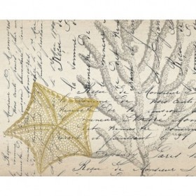 Letters to the Sea 6