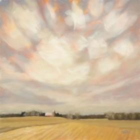 Wintry Field