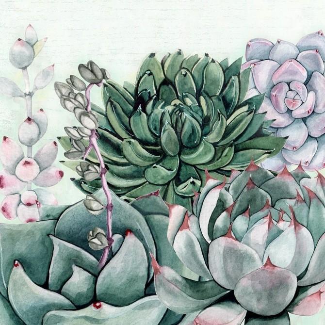 Succulent Garden II
