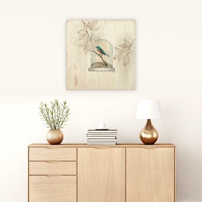 Aviary Display