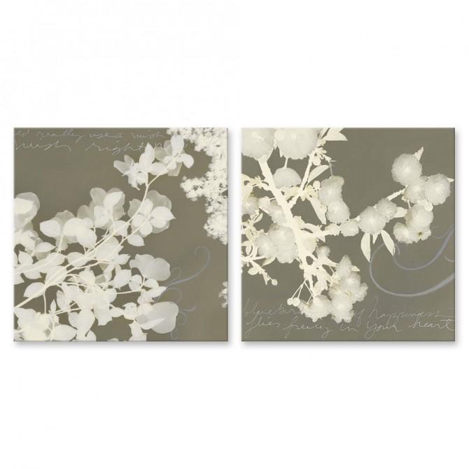 Juego de 2 cuadros de flores blancas