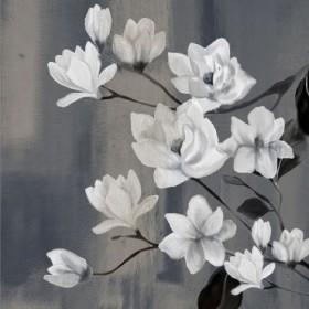 Magnolia Branches 2