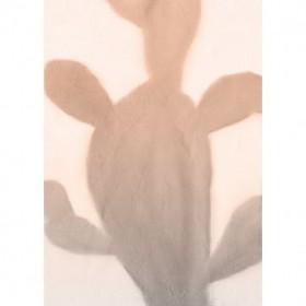 Pink Dusk Cactus 2
