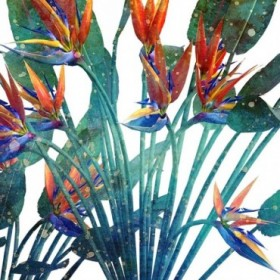 Tropic Flower 1