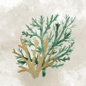 Emerald Coral 2