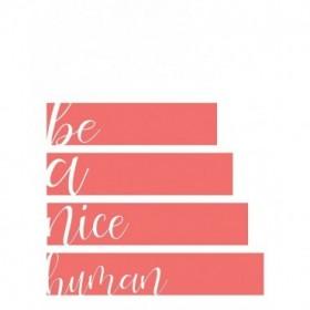 Be A Nice