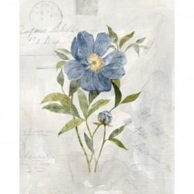 Blue Linen Peony