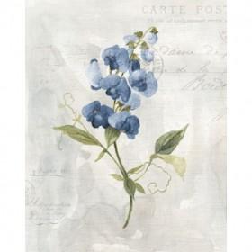 Blue Linen Sweet