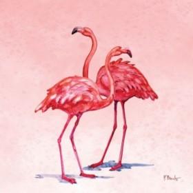 Hilo Flamingos I
