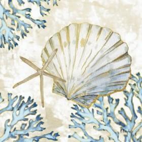 Playa Shells II