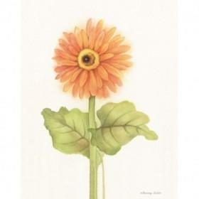 Happy Flowers II