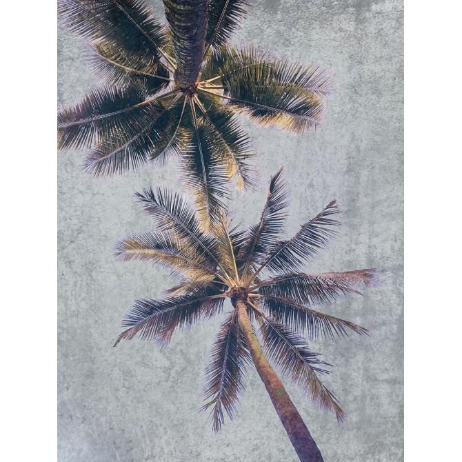 Beachscape Brown Palms