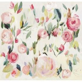 Roses Renaissance