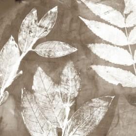 Petal Imprint II Neutral Version