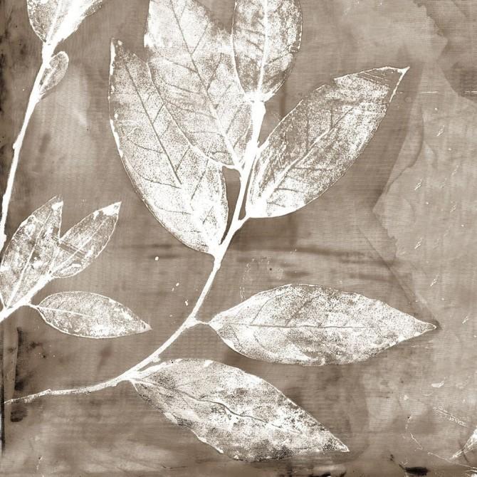 Petal Imprint I Neutral Version