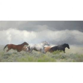 Mustang Herd II