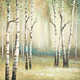 Summer Birch I