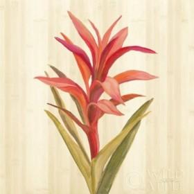 Tropical Garden III