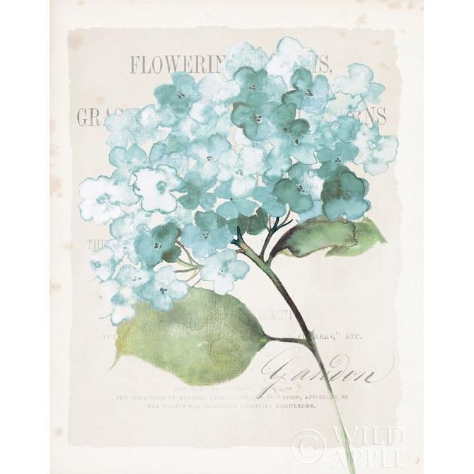Antique Floral I Blue Vintage