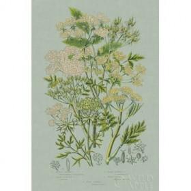 Flowering Plants III Green Linen