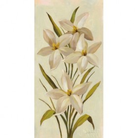 Elegant White Florals II