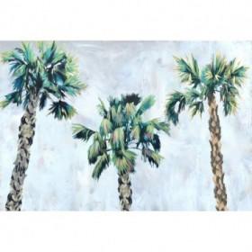 California Palm Trio