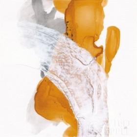 Amber Wash II