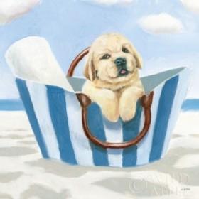 Beach Ride VI