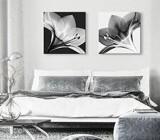 Cuadros Blanco y Negro para Dormitorio